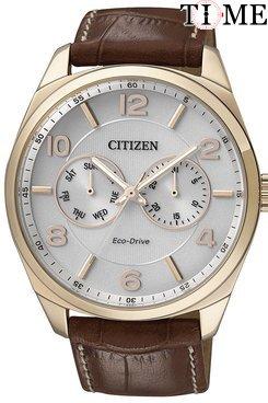 Часы Citizen AO9024-16A